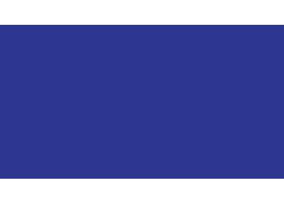 PT. Asuransi Central Asia